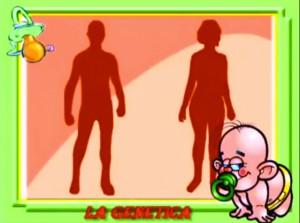 01Genética
