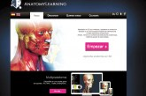 Webs para hacer más atractiva la anatomía humana