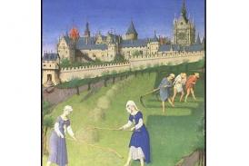 Aprende sobre la Edad Media