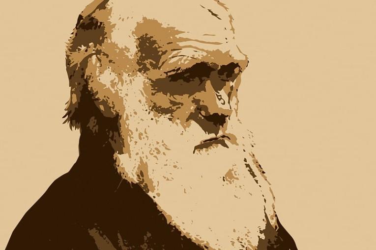 Darwin-min