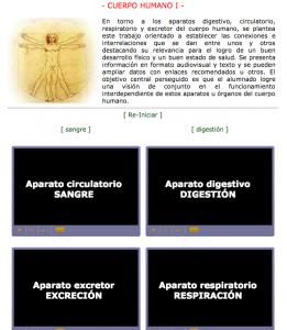 anatomia2