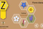 Proteger las abejas