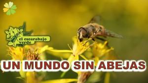imagen 3- abejas