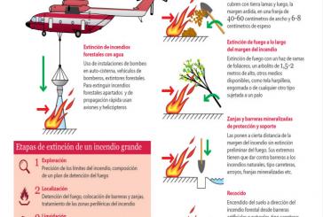 Webs para explicar y prevenir los incendios forestales