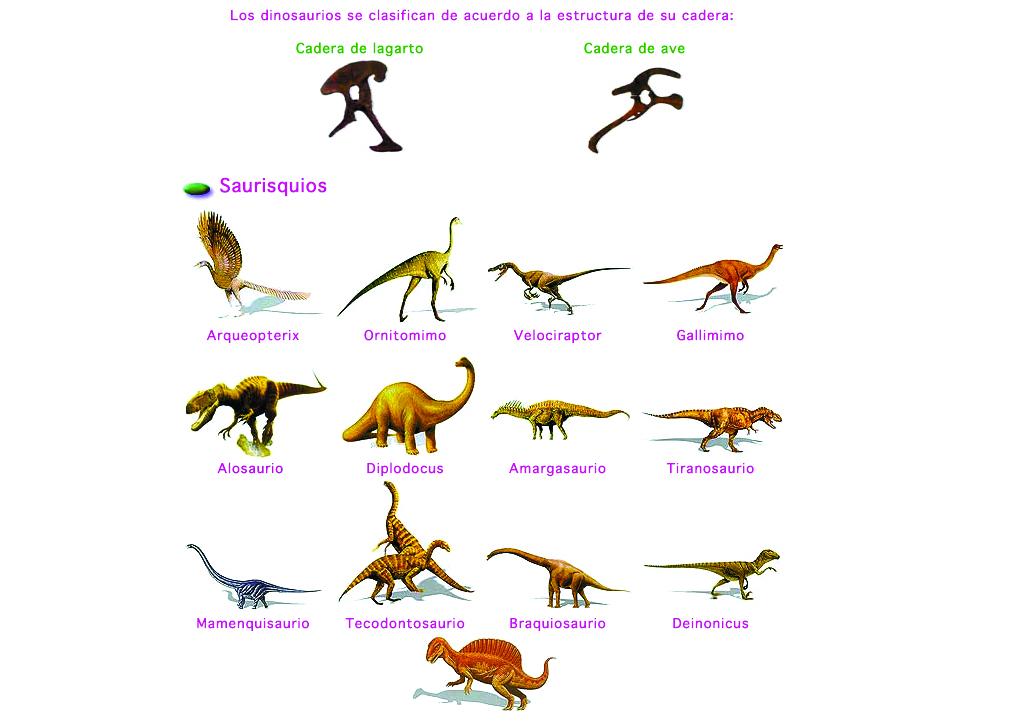 Nombres De Dinosaurios Triceratops