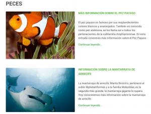 peces 4