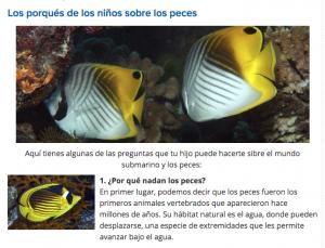 peces 5